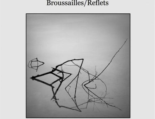 Broussailles / reflets 2015 de Germain Roesz et Gaëtan Gromer